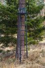 Teleskopleiter ANSITZ  ALU  Höhe 3,70 m Art.Nr. 190370