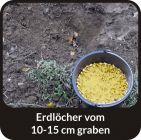 ANIS – ANISE - Wildlockmittel Konzentrat 1 kg Flasche / Art. Nr. BU-18006