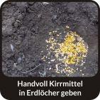 HUBERTUS-BUCHTER-HASELNUSS-AROMA-Wildlockmittel Konzentrat 1 kg Flasche / TOP - EFFEKT AN DER  KIRRUNG Art. Nr. BU-18012